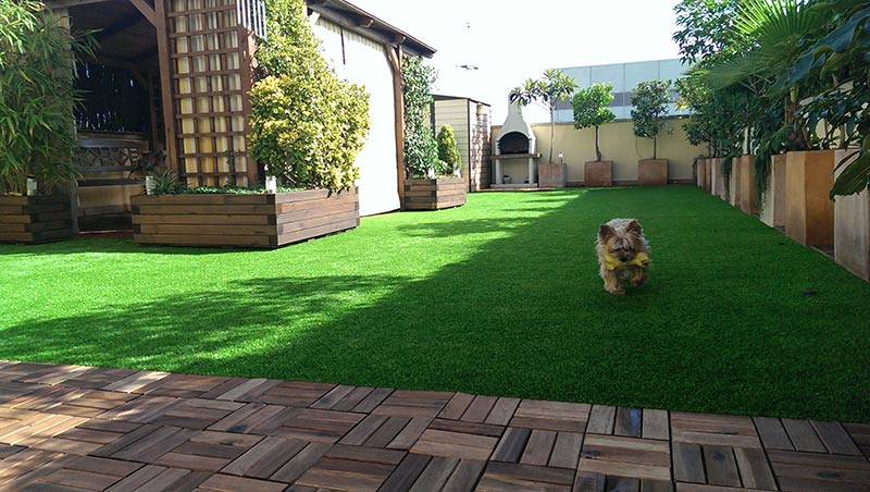 Cesped artificial madrid fabricantes y distribuidores a - Jardin cesped artificial ...